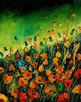 Pol Ledent - ORANGE mohnblumen
