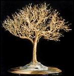 Sal Villano Wire Tree Sculpture - Golden Ulme - draht baum skulptur