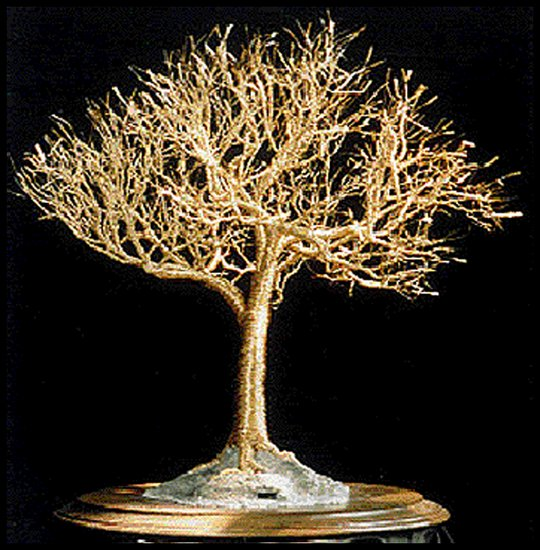 Kunstwerk >> Sal Villano Wire Tree Sculpture >> Golden Ulme - draht baum skulptur