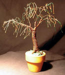 Sal Villano Wire Tree Sculpture - UMBRELLA BONSAI - Mini Wire Baum Skulptur