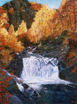 Jean-Claude Selles Brotons - fallend auf  an  herbst